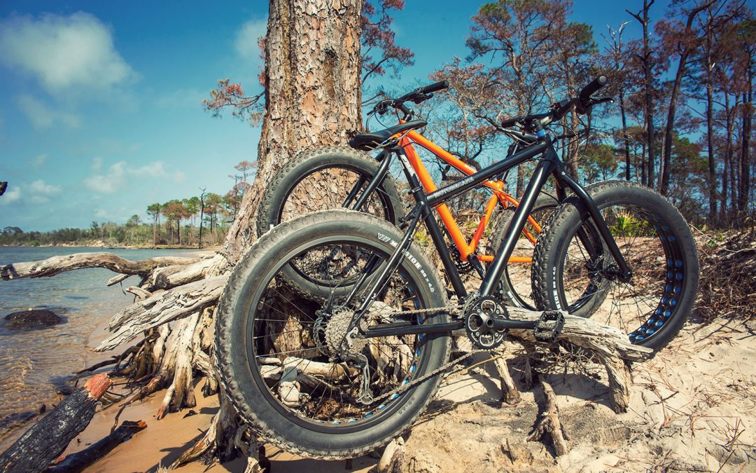 Pensacola Mountain Bike Tours have new fat bikes!